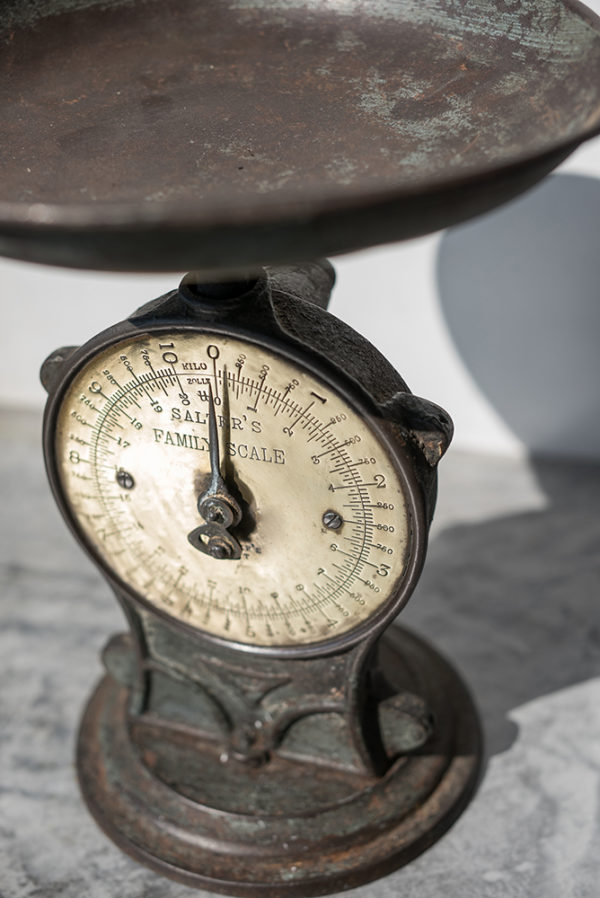 Кухонные весы Salters