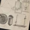 Гравюра Аммониты и альтиметр